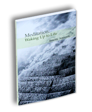 Meditation: Walking Up to Life